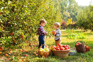 Two kids with apples in their hands