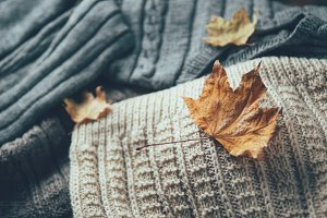 Warm winter sweaters with dry leaves