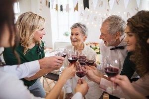 A multigeneration family clinking