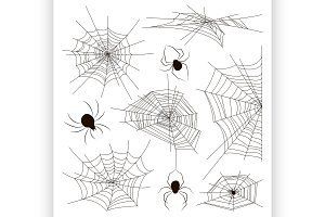 Collection of spiders and webs