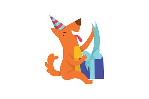 Cute dog in party hat sitting on