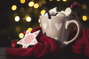 Hot chocolate with marshmallow in