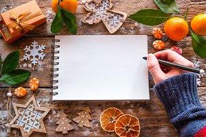 writes a christmas wish list