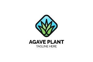 Agave Plant Logo Design