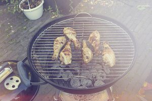 Chicken on barbecue
