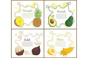 Pineapple and Avocado Set Vector