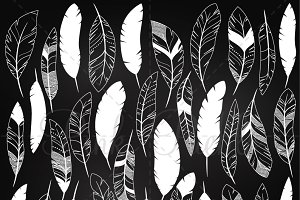 Chalkboard Feather Clipart & Vectors