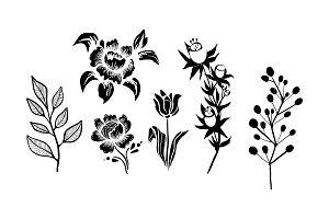 Flowers and plants set, monochrome
