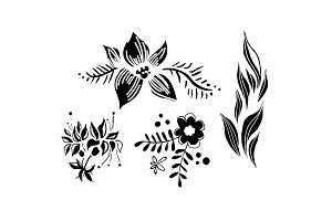 Flowers and leaves set, floral