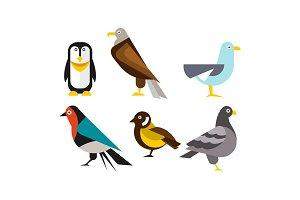Birds set, penguin, eagle, gull