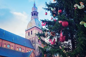 Dome Cathedral and Christmas tree
