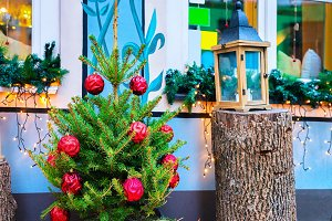 Christmas tree and Street lantern