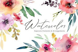 Watercolor flowers, bouquets, frames