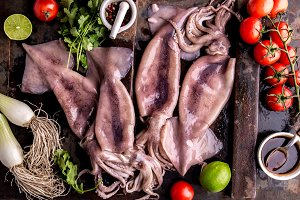 Fresh raw seafood squid calamary and