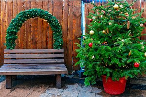 Christmas Tree and bench
