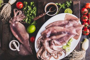 Raw squid calamary on white plate