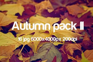 Autumn pack II
