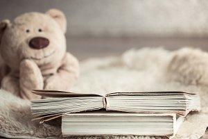 beautiful Teddy bear with a book