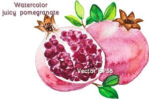 Watercolor juicy fruit pomegranate