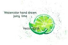 Watercolor juicy lime, vector