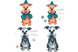 Miniature Schnauzer dog Set