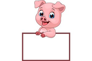 Funny funny pig