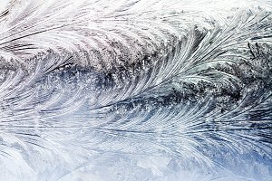 frost patterns on the winter window