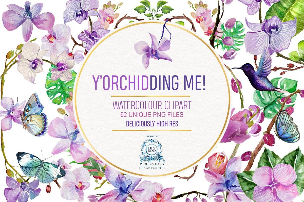 7dae219b3 62 Orchid Watercolor Clipart BUNDLE ~ Illustrations ~ Creative Market