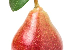 one red-yellow pear with leaf