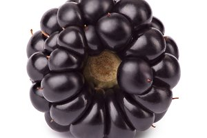 Ripe blackberry isolated