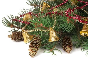 decorated Christmas fir branch