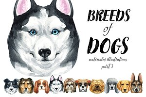 Breeds of dogs - watercolor. Part 3