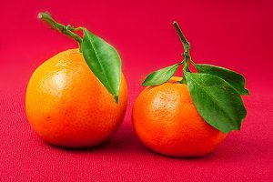 Mandarin Orange,  with green lea