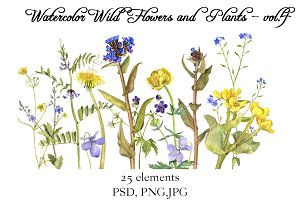 Watercolor Flowers and Plants vol.4