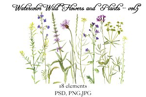 Watercolor Flowers and Plants vol.5