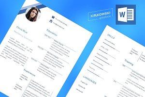 Blue Resume CV MS Word file