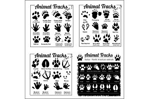 Animal Tracks - North American