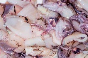 fresh squid tubes, seafood