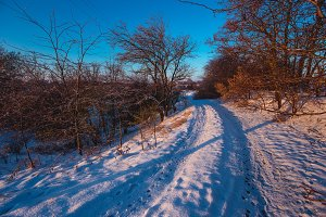 Winter sunny morning landscape with