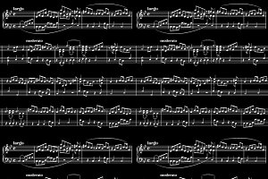 Abstract white music sheet on black