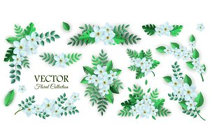 Vector spring white flowers with