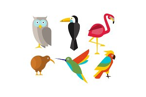 Birds set, owl, flamingo, parrot
