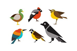 Birds set, duck, bullfinch, sparrow