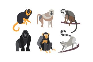 Collection of monkeys, different