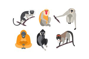 Different breeds of monkeys set