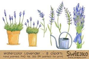 Watercolor ClipArt -Lavender