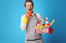 scrubwoman with basket with cleanser