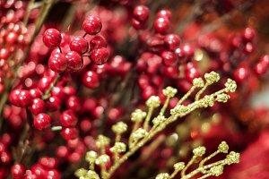 Christmas decoration winterberry