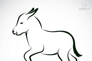 Vector of an donkey. Animal.