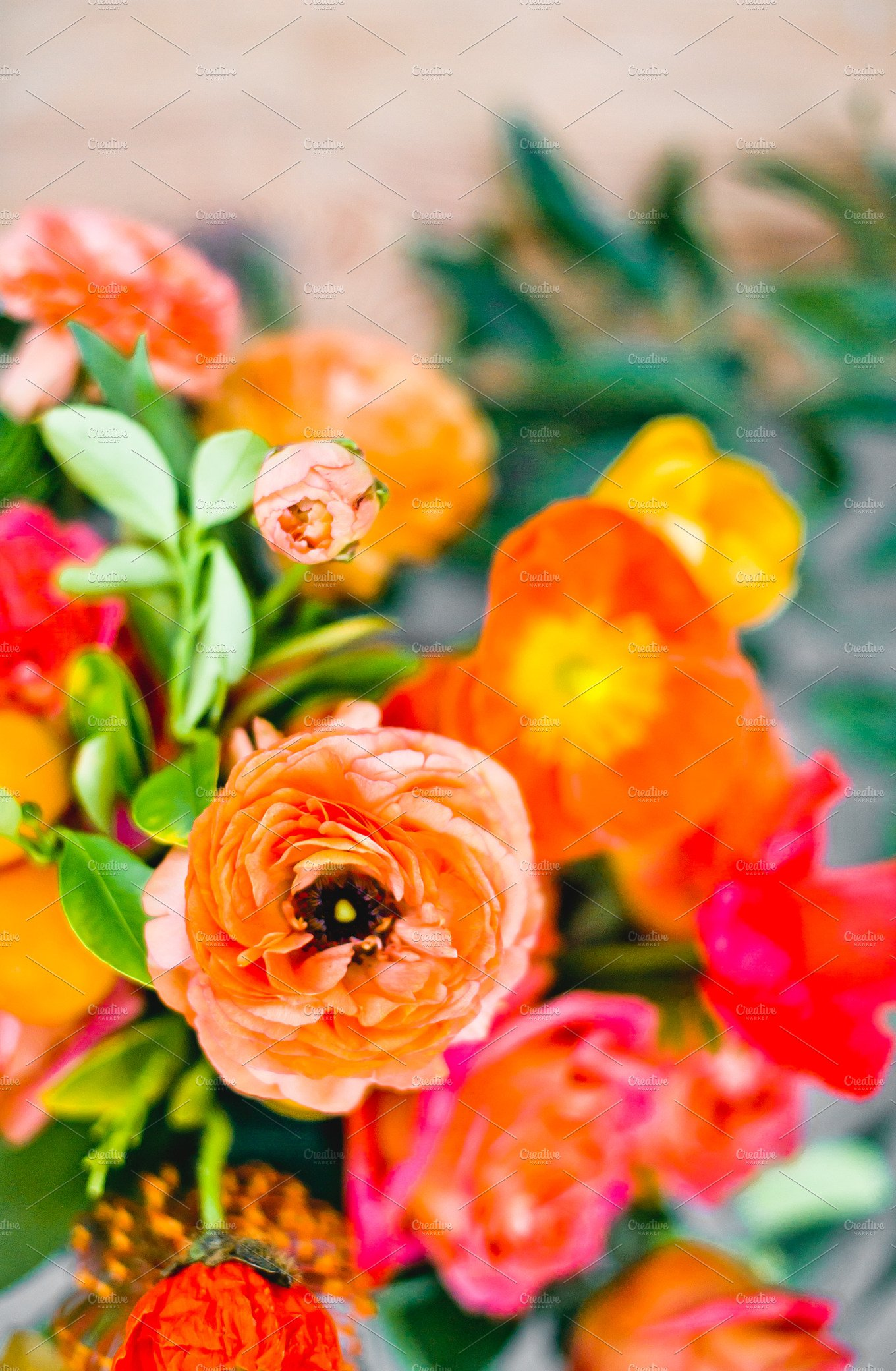 Bright Bold Flowers In Orange Pink Nature Photos Creative Market